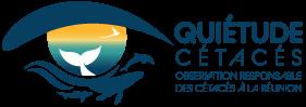 Observer les mammifères marins et les tortues marines à La Réunion